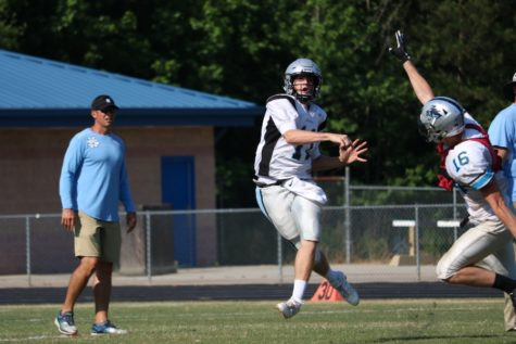 Panthers host spring football game