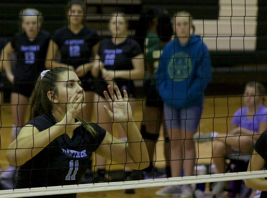 A+Lady+Panther+prepares+to+set+the+ball.+The+volleyball+team+finished+the+day+with+a+3-1+record+and+ended+in+second+place.