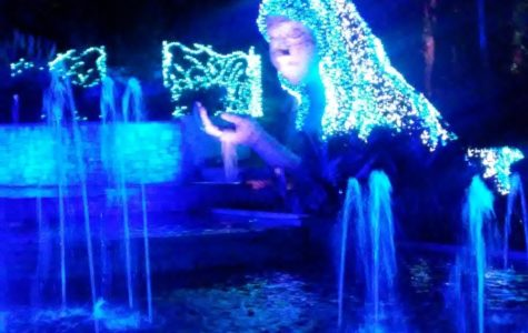Celebrate the season with a holiday lights spectacular