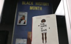 Riveting novel brings social injustices to light