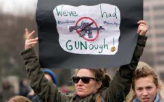 Failure to execute duties to blame for Stoneman Douglas, not the NRA