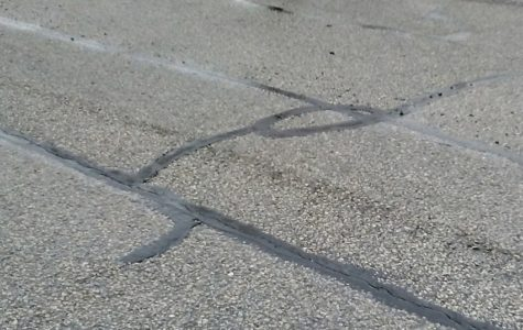 To pave, or not to pave, that is the question