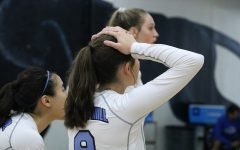 Lady Panthers strike down War Eagles, fall to Cougars
