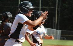 Wayne County's walk-off win forces game three