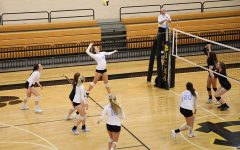 Lady Panthers sweep South Effingham and Harris County, advance to Elite Eight
