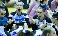 Pantherettes bring home second consecutive state championship