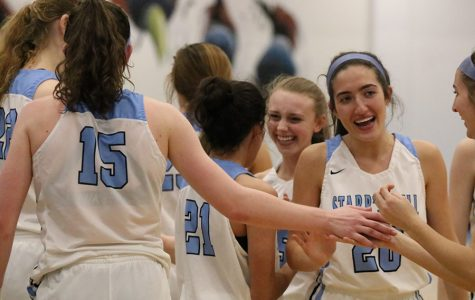 Hudson's hot hand helps Lady Panthers advance