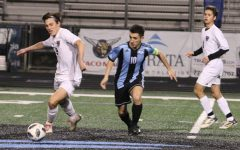Panthers fall prey to Wildcats