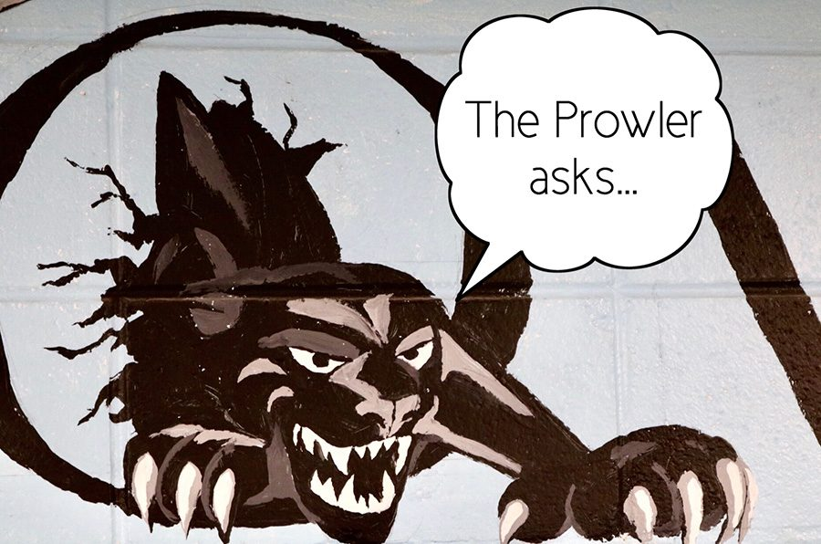 In the first post in this column, The Prowler encourages readers to engage in an online discussion regarding why vapes appeal to teens.