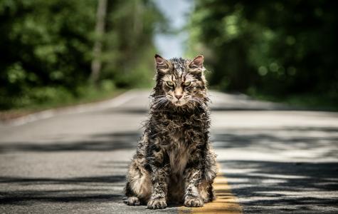 'Pet Sematary' reboot resurrects classic horror story