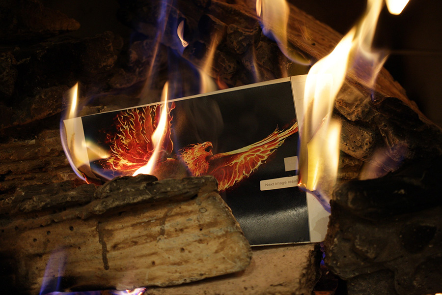 April+18%2C+2019+-+Photo+of+a+phoenix+burns+in+a+fire.+In+Greek+mythology%2C+after+a+phoenix+dies%2C+it+is+born+again+from+the+ashes+of+its+predecessor.
