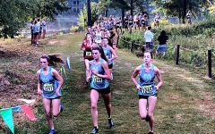 Starr's Mill paces other Fayette County teams in AT&T Panther Invitational