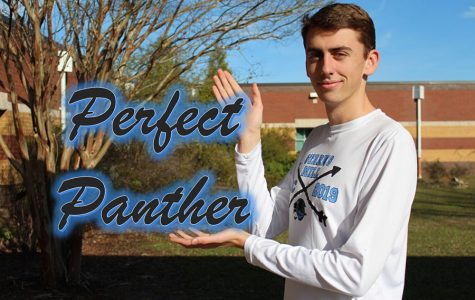 Perfect Panther