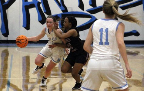 Senior Alice Anne Hudson looks to get around a Demon for a basket. Hudson led the Lady Panthers in scoring with 18 points. The Lady Panthers have now won 22 straight games, a streak that began on Dec. 3.