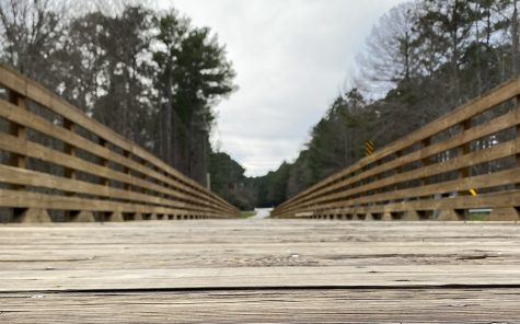 Located on Woodcreek Lane, the Woodcreek bridge was built to allow easier access to golf cart paths.