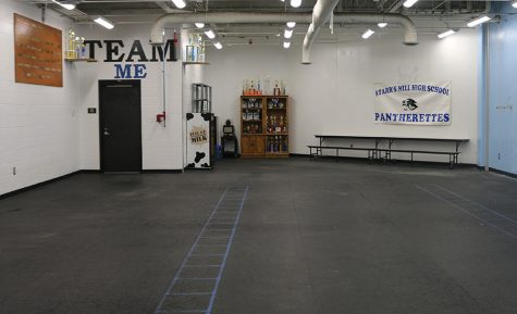 The booster club for the dance team at Starr's Mill has been working on preparing a new in-school studio for the Pantherettes. This includes new floors and a hand-painted mural.